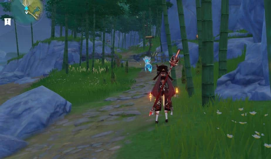 Bamboo Locations In Xingce Village