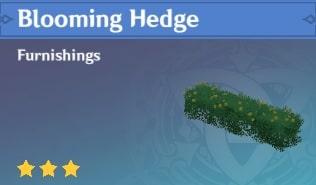 Furnishing Blooming Hedge