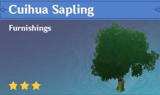 Cuihua Sapling