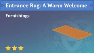 Furnishing Entrance Rug A Warm Welcome