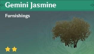 Furnishing Gemini Jasmine