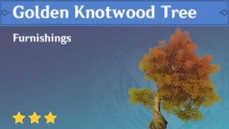 Furnishing Golden Knotwood Tree