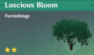 Luscious Bloom