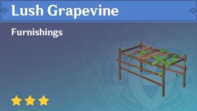 Furnishing Lush Grapevine