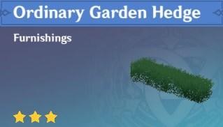 Ordinary Garden Hedge