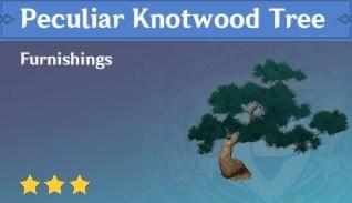 Peculiar Knotwood Tree