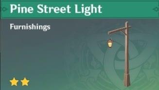 Furnishing Pine Street Light