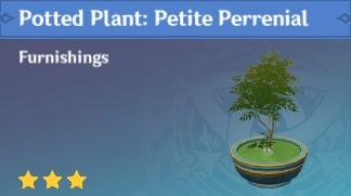 Potted Plant: Petite Perrenial