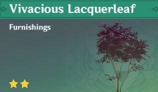Vivacious Lacquerleaf