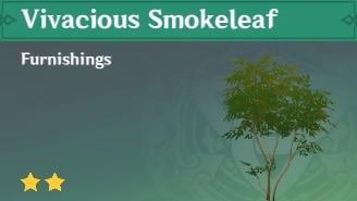 Furnishing Vivacious Smokeleaf