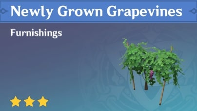 Furnishing Newly Grown Grapevines