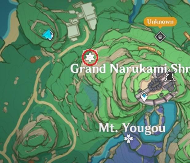 10 Electroculus Behind Ruin Guard Inside Sealed Gate Map