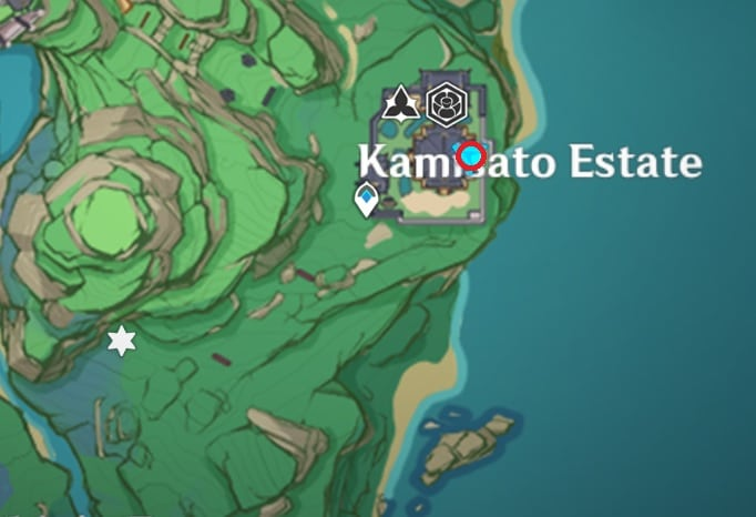 22 Electroculus Under The Cliff Near Kamisato Estate Map