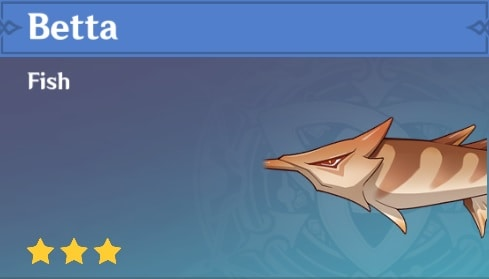 Fish Betta