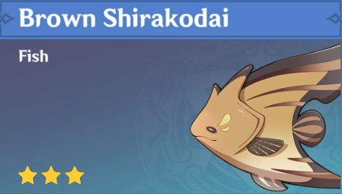 Fish Brown Shirakodai