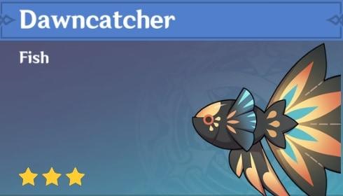 Fish Dawncatcher