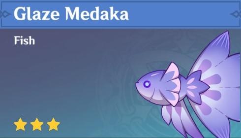 Fish Glaze Medaka