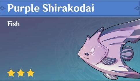 Fish Purple Shirakodai