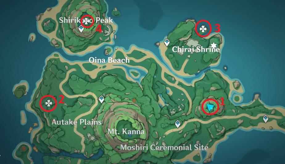 4 Perches Location in Tsurumi Island